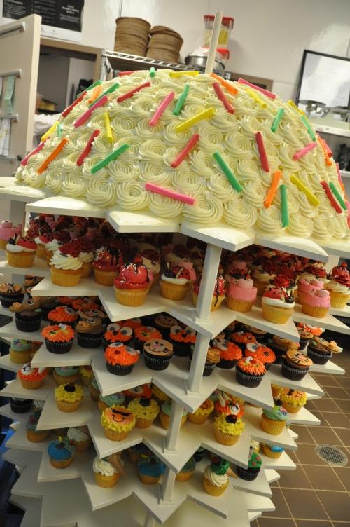 Florida's Largest Cupcake